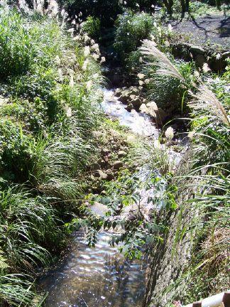 stream on yuan ming shan