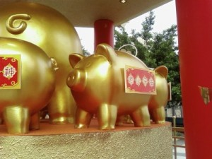 affluent-pig2