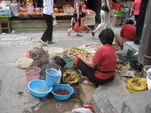 gz-street-vendor
